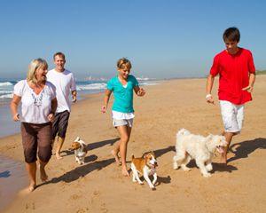 Rodzina diabetykow na spacerze nad brzegiem morza z dwoma psami