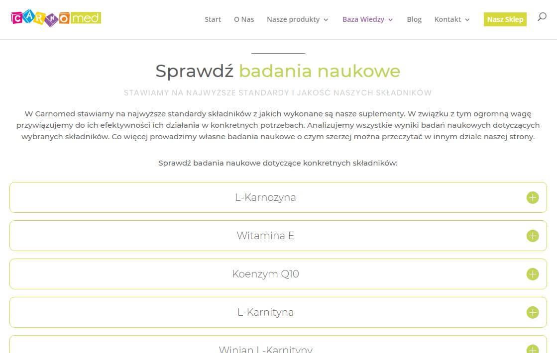 Strona badania