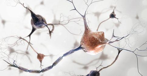 Komórki mózgowe stażeją się szybciej  w cukrzycy typu 1